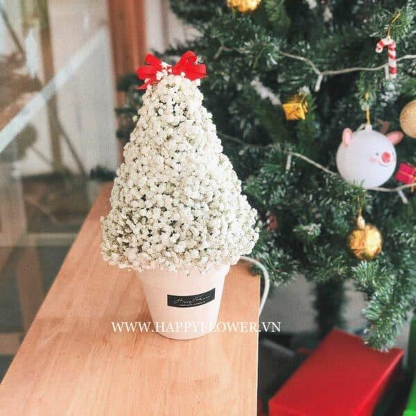 CHẬU BABY WHITE XMAS TREE
