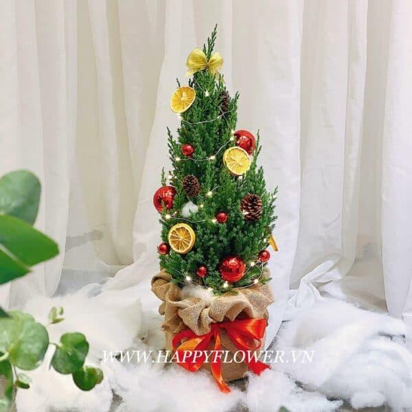 CÂY HAPPY CHRISTMAS (size M)