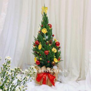 CÂY HAPPY CHRISTMAS (size L)