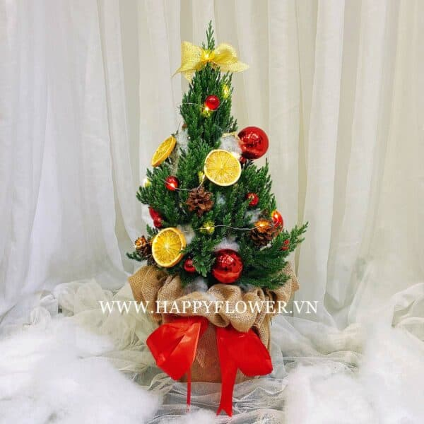 CÂY HAPPY CHRISTMAS (size S)