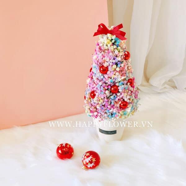 CHẬU BABY RAINBOW XMAS TREE MIX TRÁI CHÂU ĐỎ – SMALL SIZE