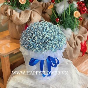 LOVELY BOX MIX BABY BLUE (giấy voan trắng)
