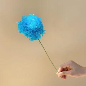 ctc kho sizenho kichthuoc xanhblue