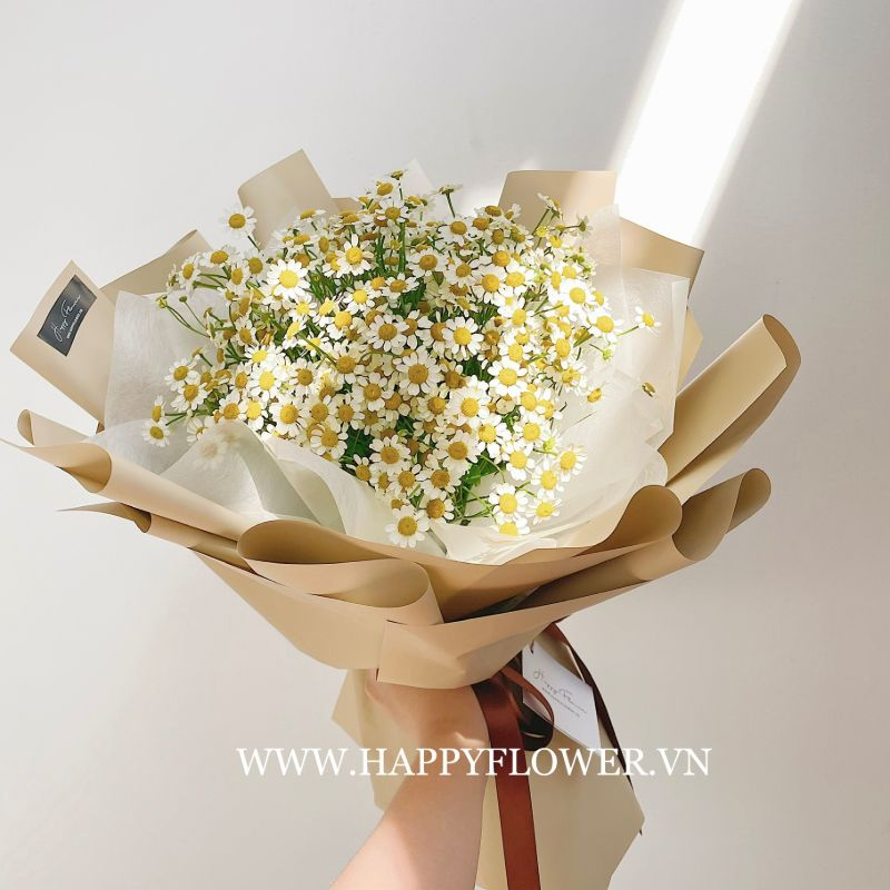 bó hoa cúc tana gói giấy