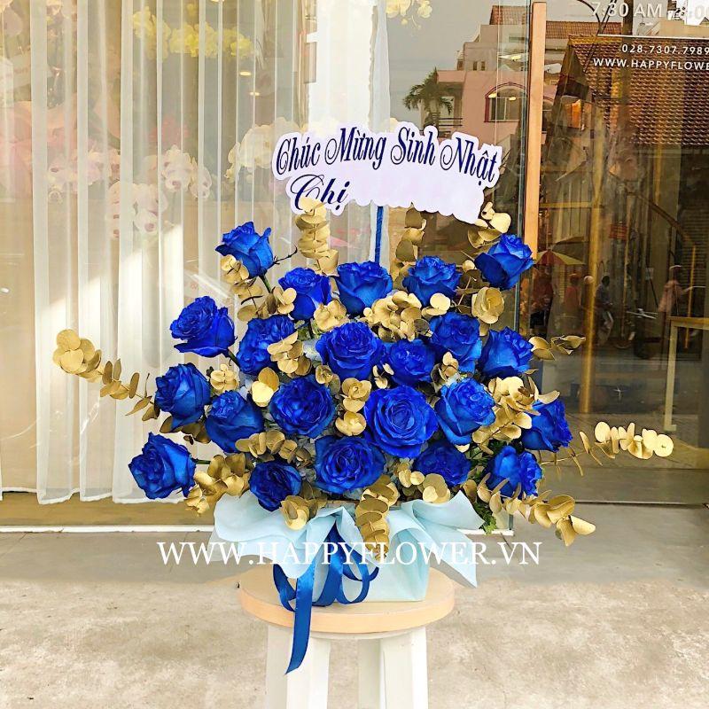 Kệ hoa hồng xanh dương