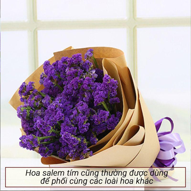 bó hoa salem tím