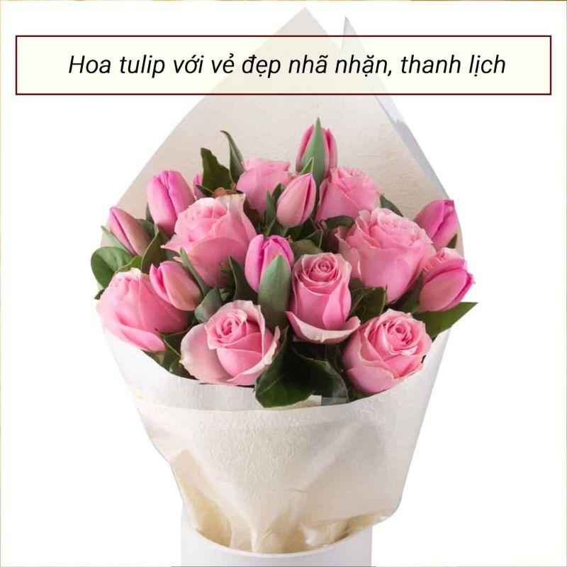 bó hoa tulip hồng