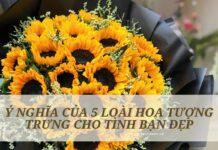 bó hoa hướng dương chúc mừng tình bạn