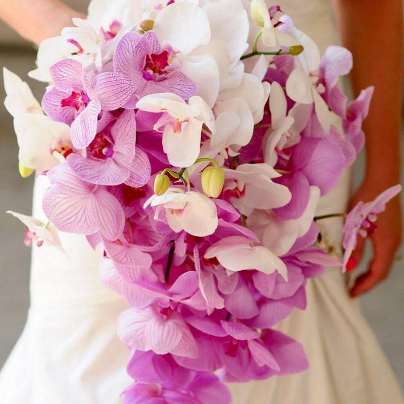 bó hoa lan hồ điệp trắng tím