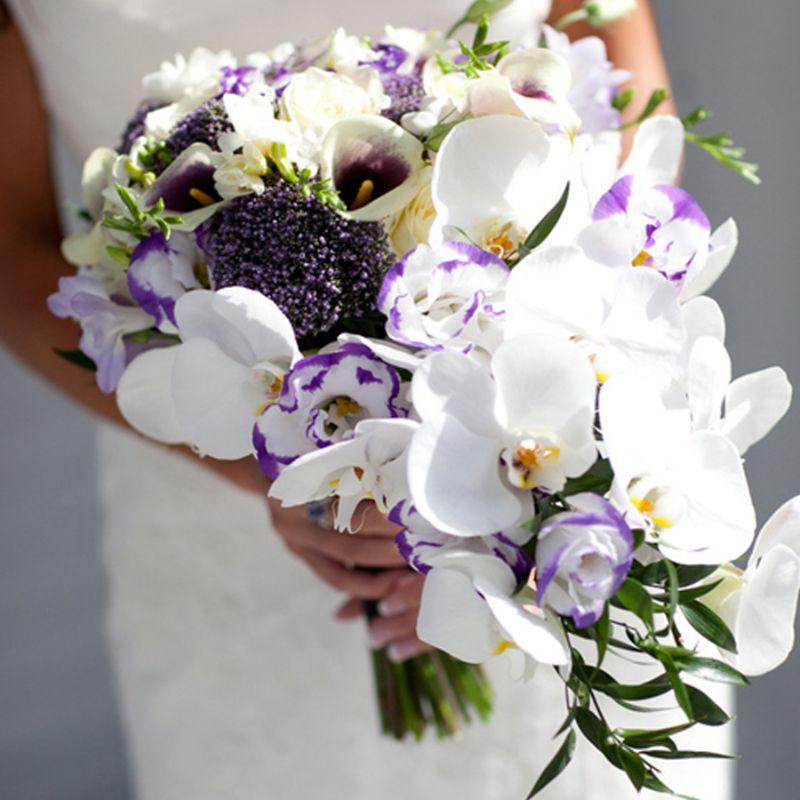 bó hoa lan hồ điệp trắng