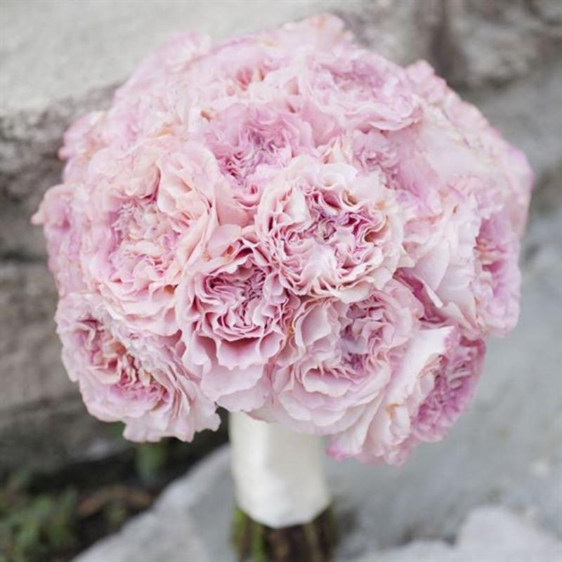 hoa cưới cầm tay hoa cẩm chướng màu tím hồng