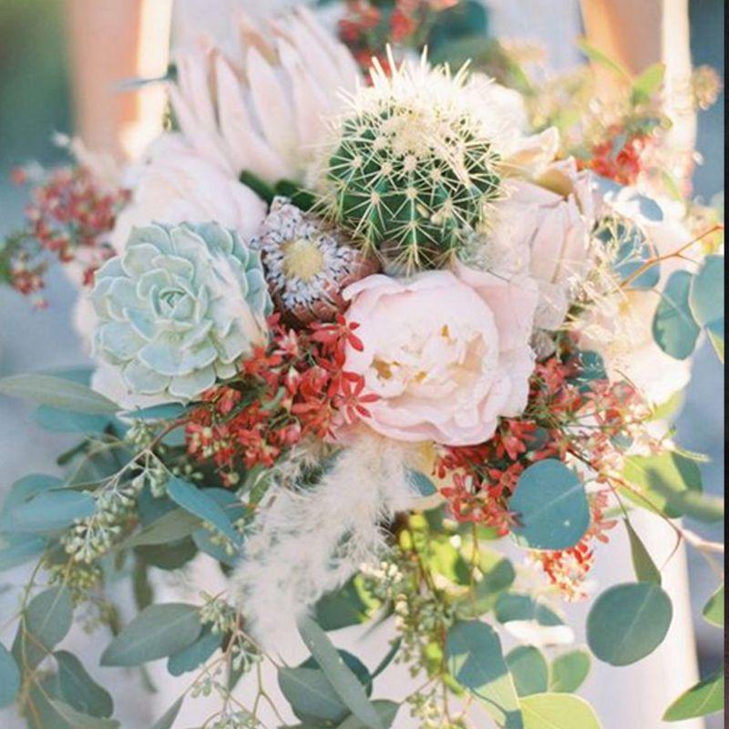 hoa sen cưới sen đá và xương rồng