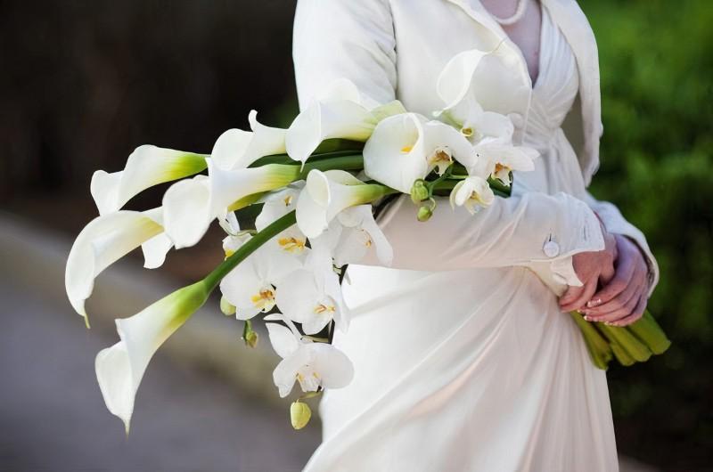 hoa loa kèn cưới dáng dài