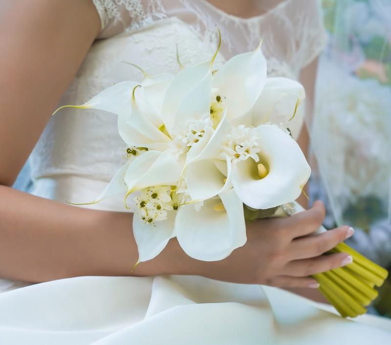 Hoa loa kèn cưới màu trắng