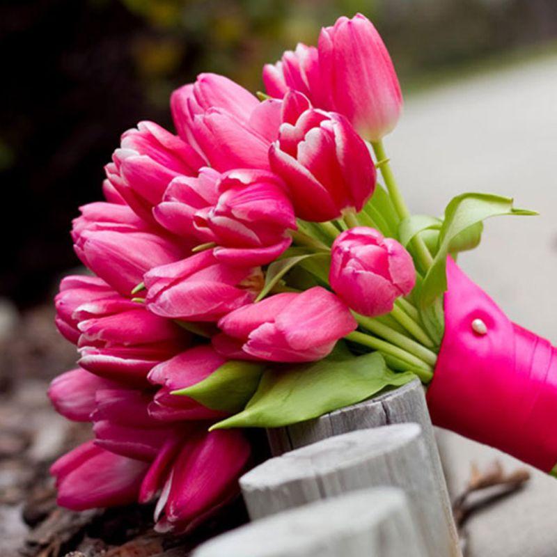 bó hoa cưới tulip màu hồng