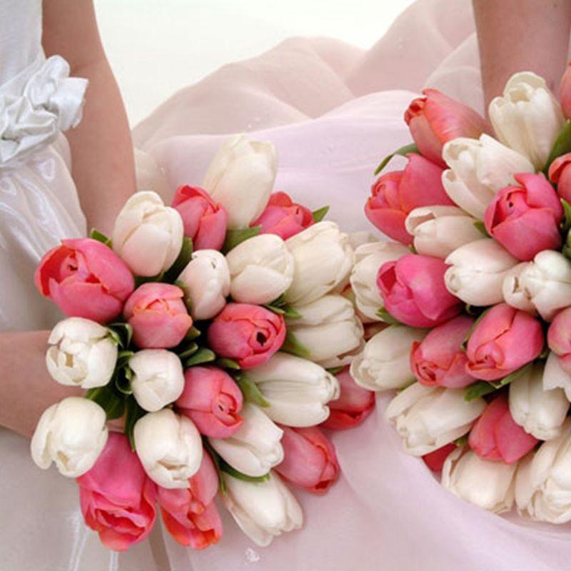 bó hoa tulip hồng trắng