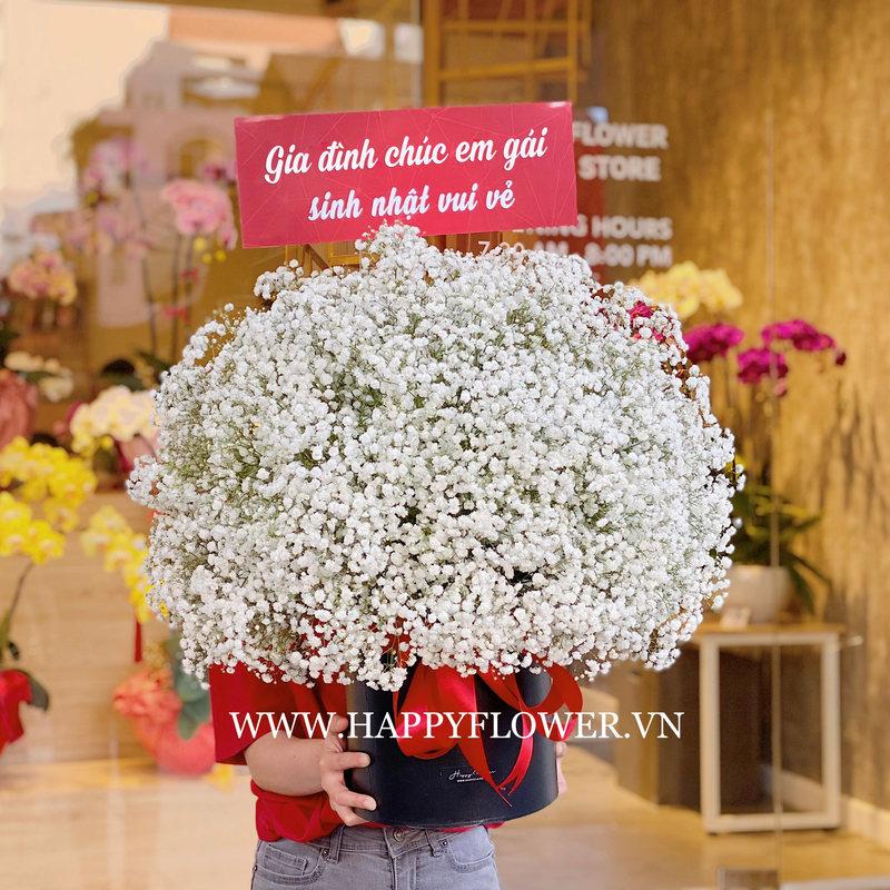 Hộp hoa sinh nhật baby trắng khổng lồ.