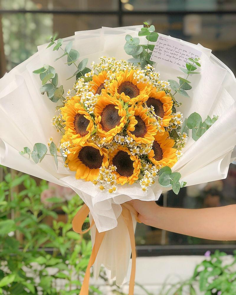 bó hoa hướng dương nhiều hoa màu vàng trong giấy gói trắng