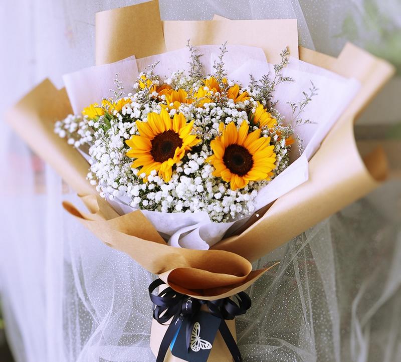 bó hoa hướng dương màu vàng nhiều bông trong giấy gói màu trắng