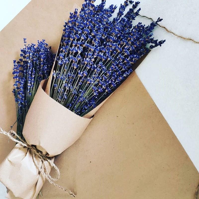 bó hoa Lavender màu xanh biếc