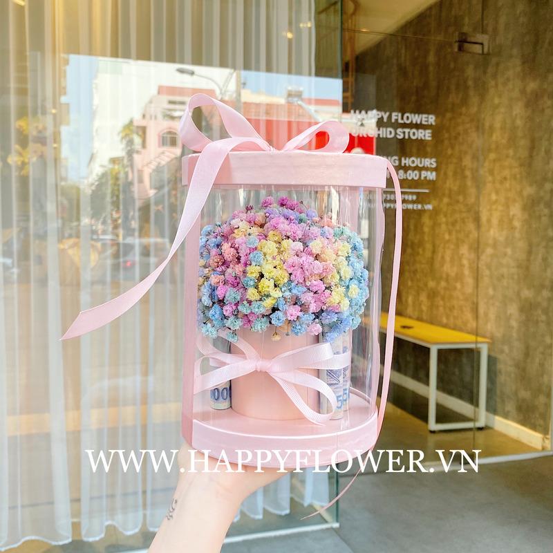 Hộp quà hoa baby cầu vồng mix tiền polyme