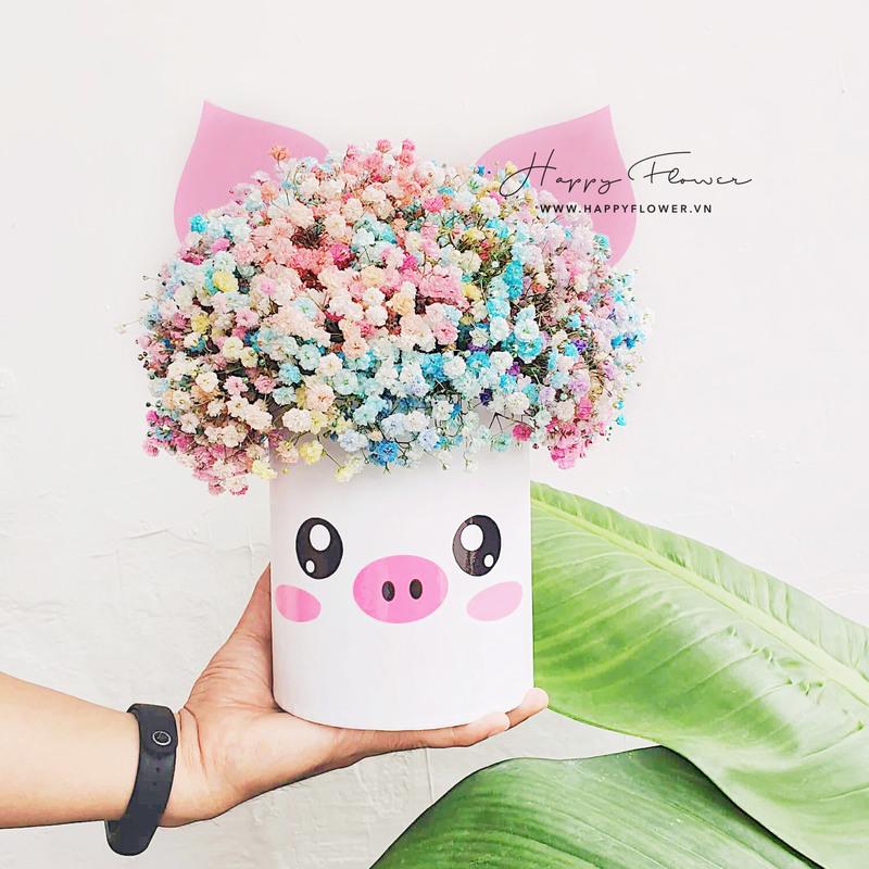 hộp hoa baby cầu vồng dáng chú heo giá bao nhiêu