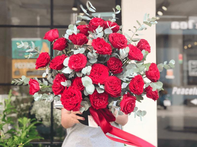 chậu hoa hồng ecuador màu đỏ rực