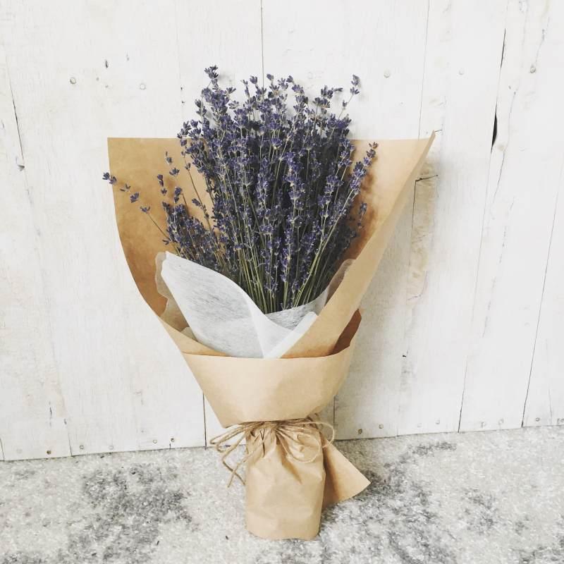 bó hoa oải hương màu tím