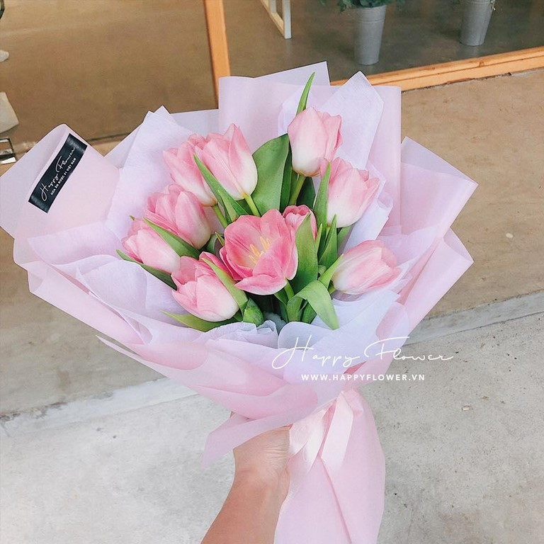 Hoa tulip màu hồng tuyệt đẹp