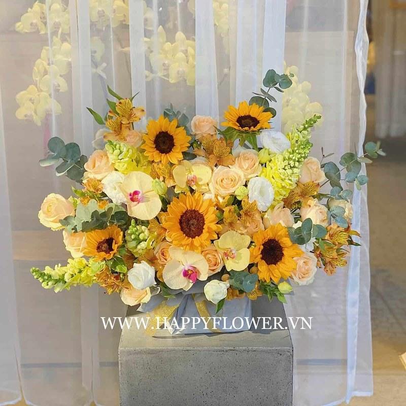 hộp hoa hướng dương vàng mix lan hồ điệp và hoa hồng màu be