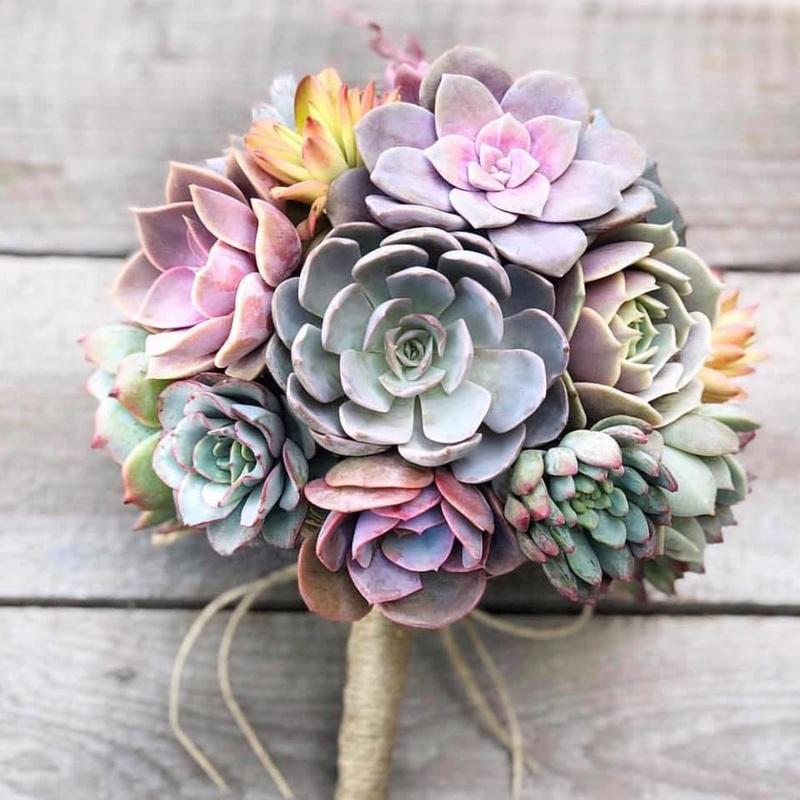 hoa cưới cầm tay bằng sen đá