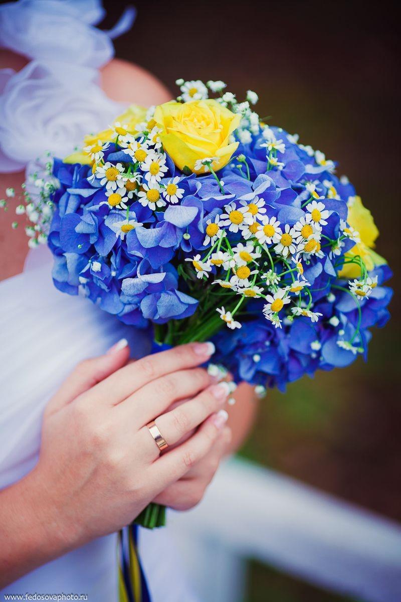hoa cẩm tú cầu màu xanh và hoa cúc họa mi