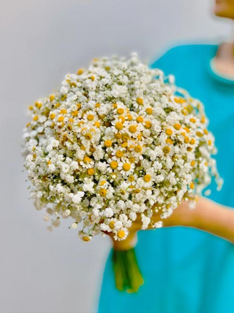 hoa cưới cầm tay cúc họa mi dạng bó tròn