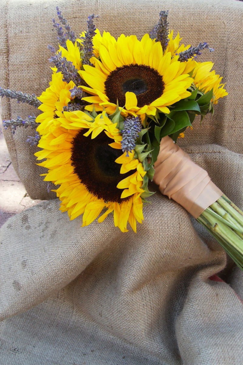 hoa cưới hướng dương mix oải hương