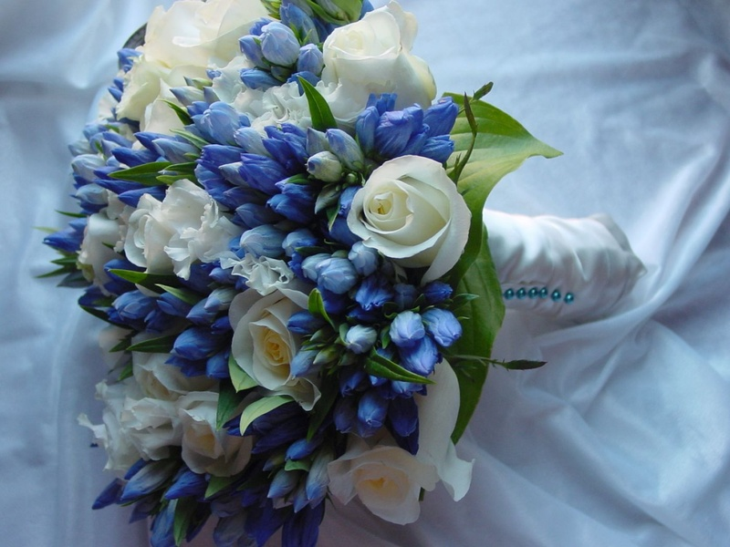 Bó hoa cưới cầm tay màu xanh dương từ hoa thủy tiên xanh mix hoa hồng