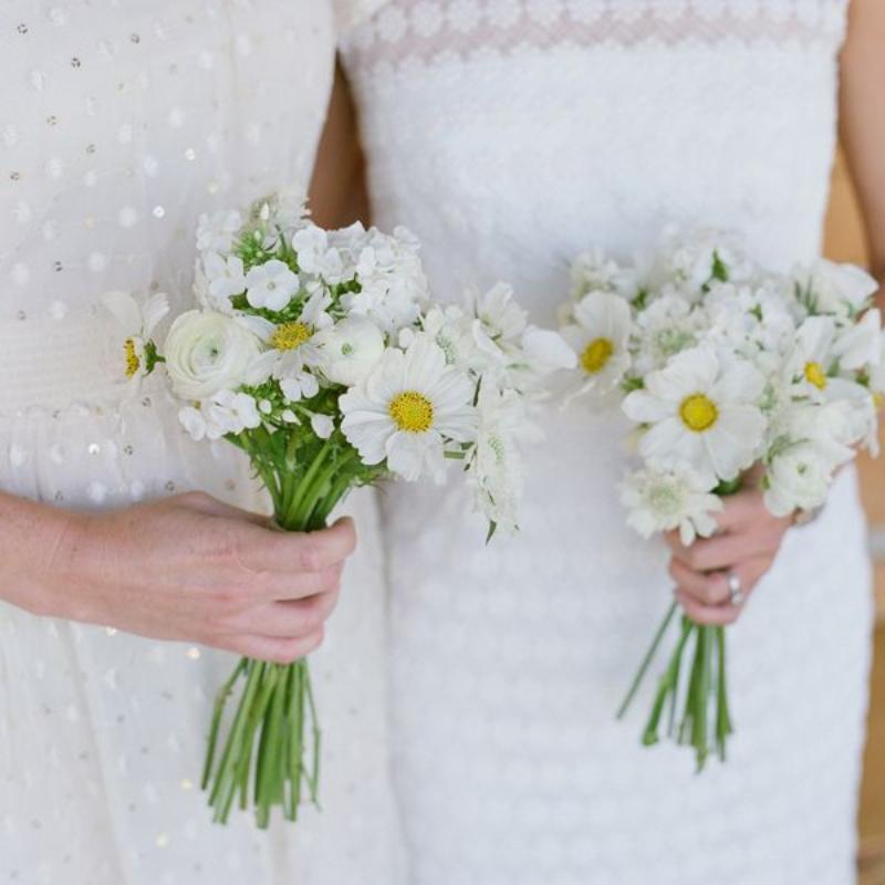 bó hoa cúc họa mi cầm tay đơn giản
