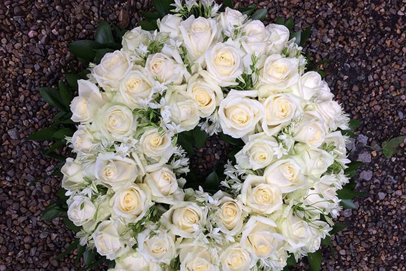 Hoa hồng trắng mang vẻ đẹp sang trọng