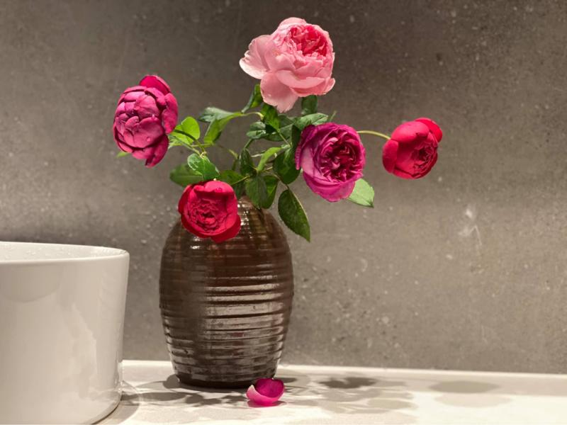 Bình hoa hồng autumn rouge đỏ tím