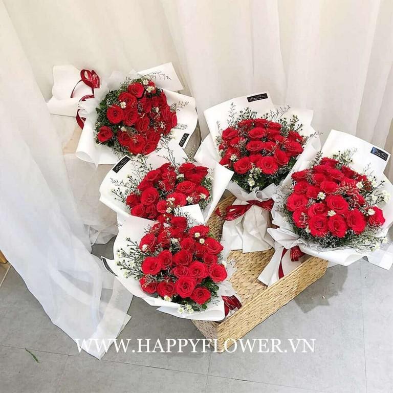 Hoa hồng Ecuador mang vẻ đẹp sang trọng