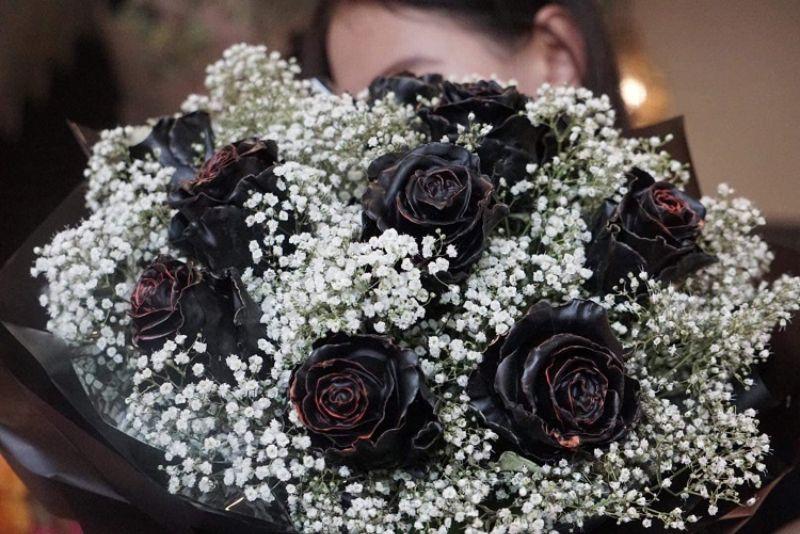 hoa hồng socola phủ đen