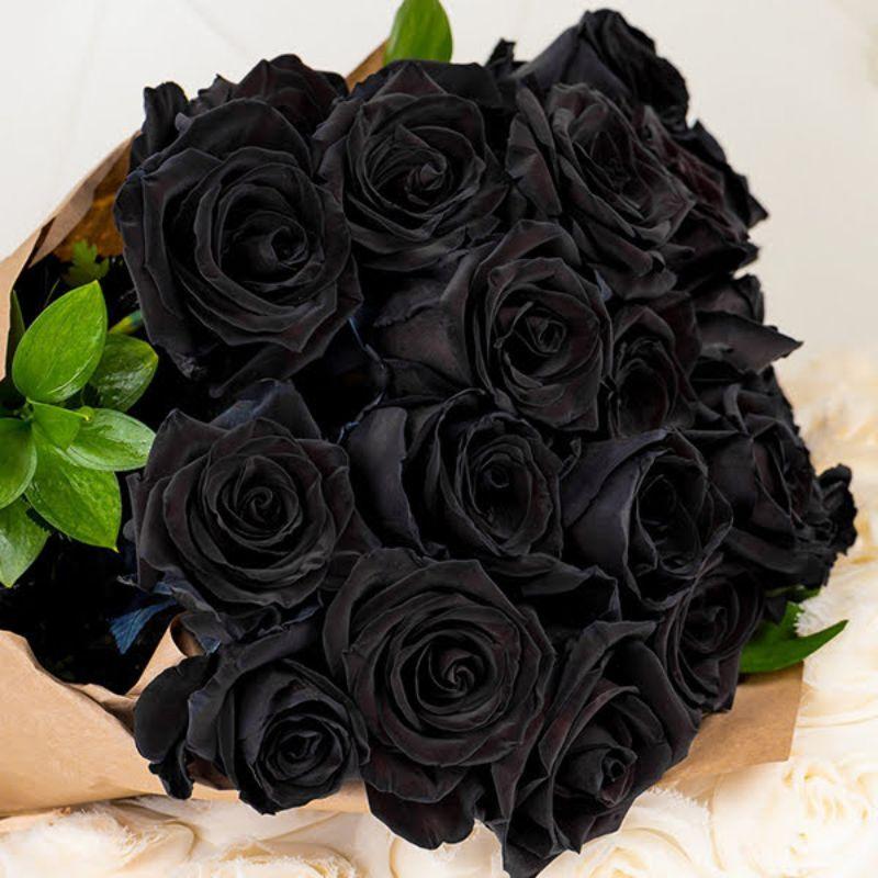 bó hoa hồng đen