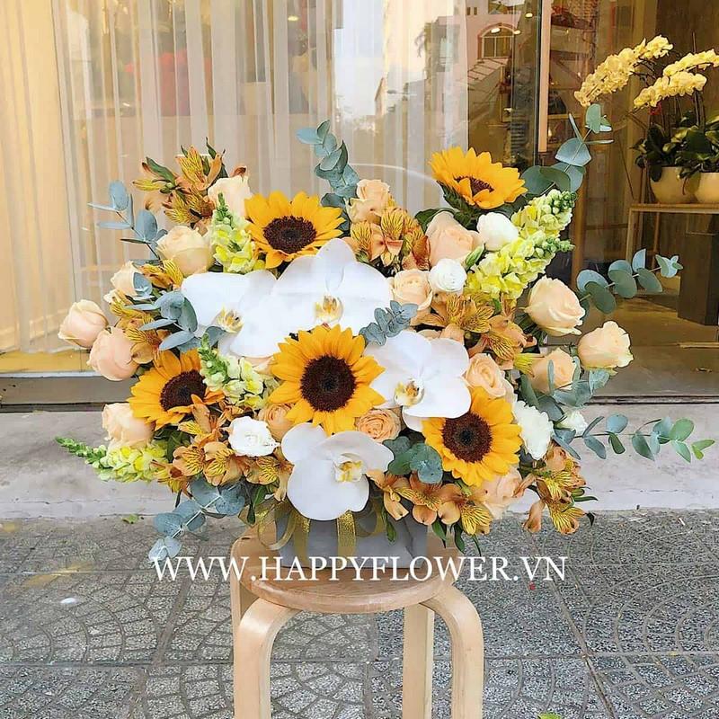 giỏ hoa hướng dương và hoa lan hồ điệp trắng