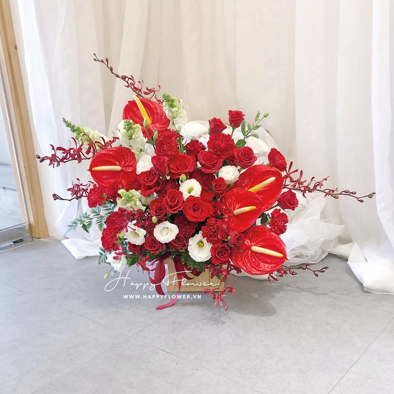 chậu hoa khai trương hoa hồng môn mix hoa hồng đỏ
