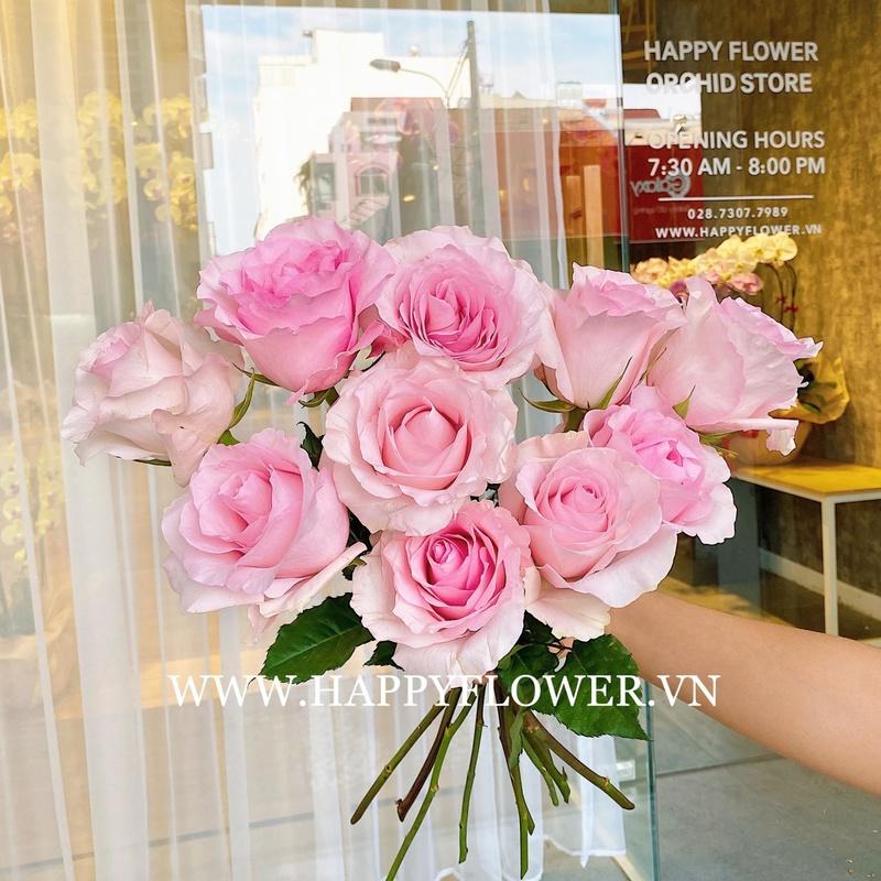 10 cành hoa hồng màu hồng nhạt thanh lịch