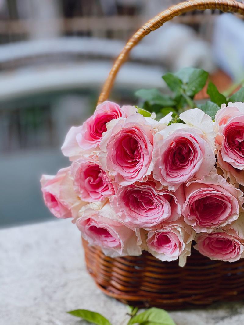 giỏ hoa hồng phấn đẹp nhẹ nhàng và thanh cao