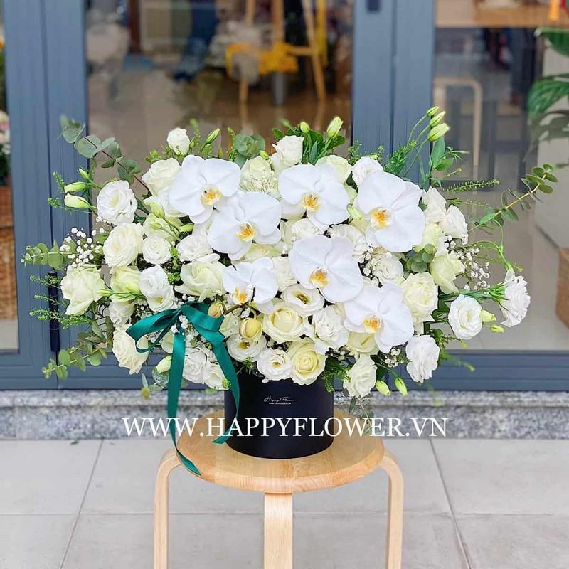 chậu hoa lan hồ điệp màu trắng mix hoa hồng xanh nhạt