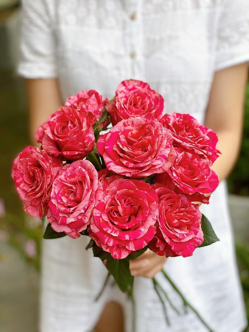 bó hoa sinh nhật hồng đỏ nhập khẩu