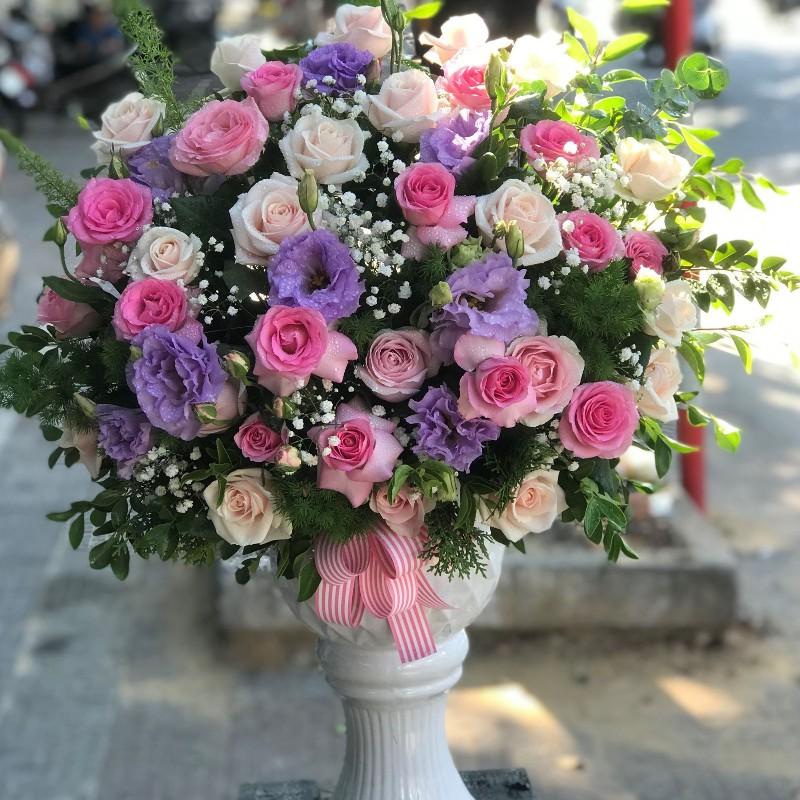 Chậu hoa hồng lẫn tím đầy màu sắc