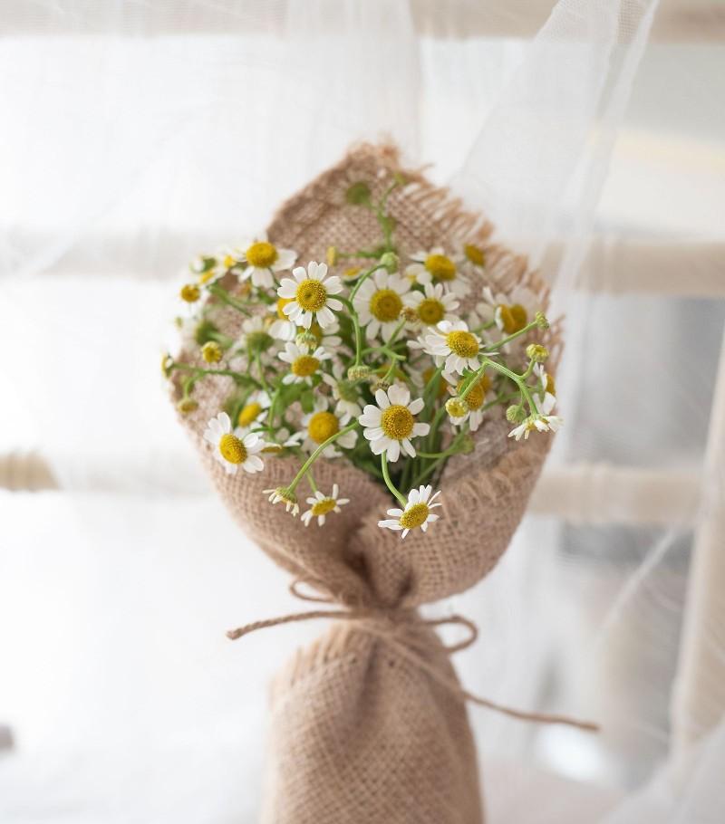 Tự tay bó hoa cúc họa mi tuyệt đẹp