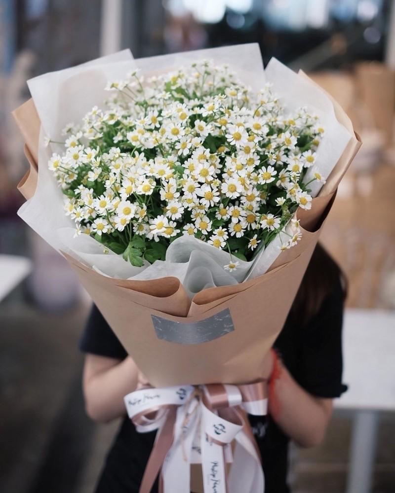 Bó hoa cúc họa mi đẹp nhẹ nhàng